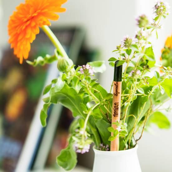 matita sprout personalizzata ambientata